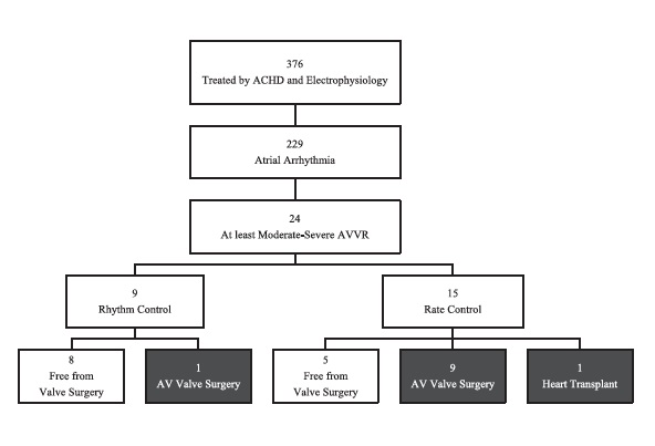 Improvement in ventricular function with rhythm control of atrial arrhythmias may delay the need for atrioventricular valve surgery in adults with congenital heart disease.